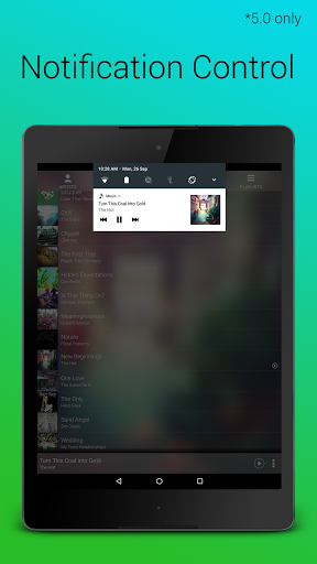 Audio Player screenshots 14