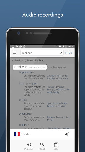 Dictionary Linguee 1.3.0 screenshots 4