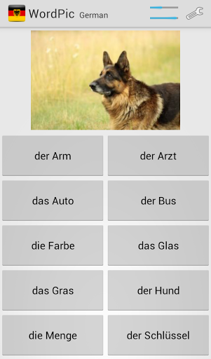 Learn German with WordPic 1.4.4 screenshots 3