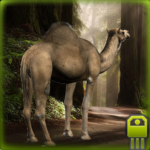 Download Durable Camel Simulator  APK MOD Unlimited Gems