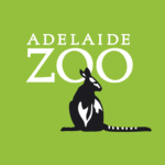 Download Full Adelaide Zoo MOD APK Unlimited Gems