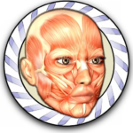 Download Speed Anatomy Quiz Free  APK MOD Unlimited Cash