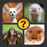 Download Full 4 Pictures 1 Word 1.2.3 APK MOD Unlimited Cash