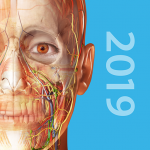 Download Human Anatomy Atlas 2019: Complete 3D Human Body MOD APK Unlimited Cash