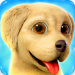 Download Dog Town: Pet Shop Game, Care & Play with Dog 1.3.44 APK MOD Unlocked