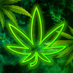 Get Hempire – Plant Growing Game 1.23.7 MOD APK Unlimited