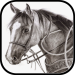 Get Learn to draw in pencil. 3.0.0 MOD APK Full